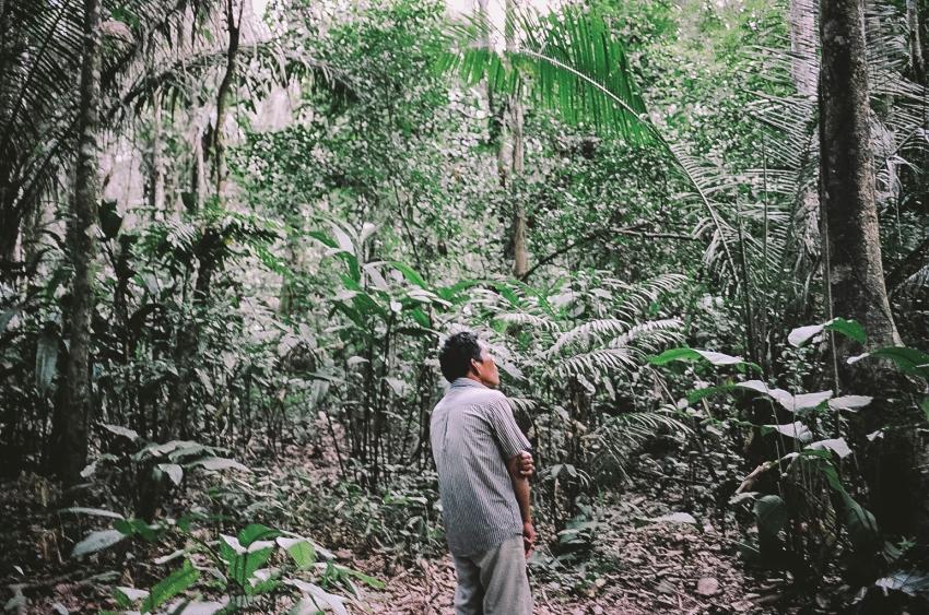 amazon014