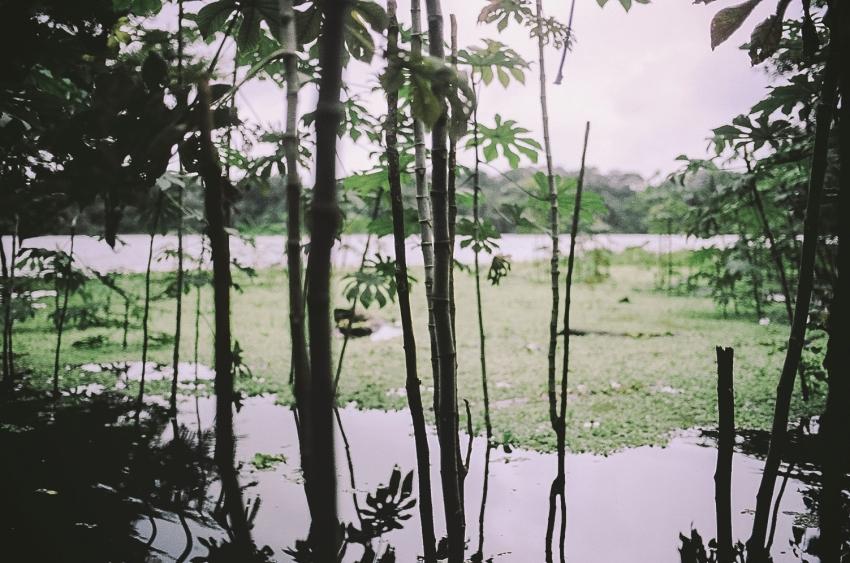 amazon022